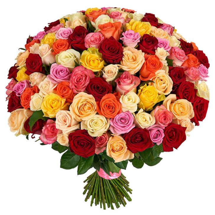 Розы Микс 51